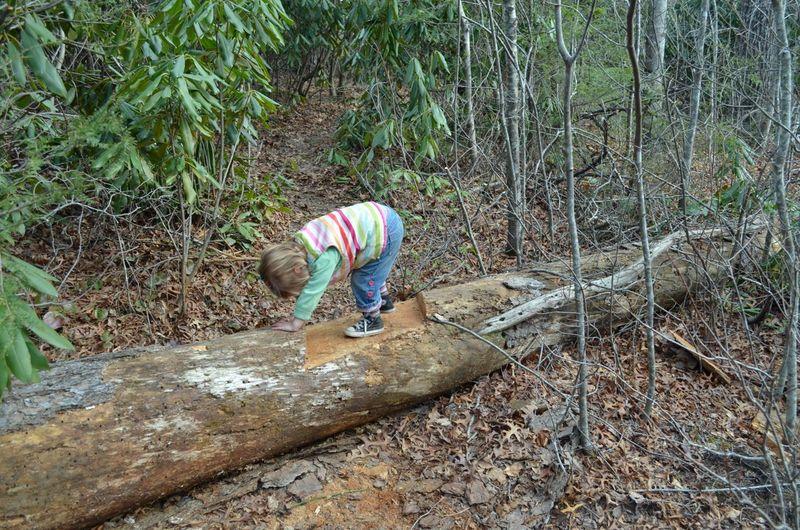 Tricky trail 7